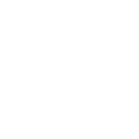 BigTrunk